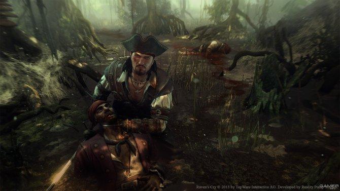 Скриншот игры Raven's Cry