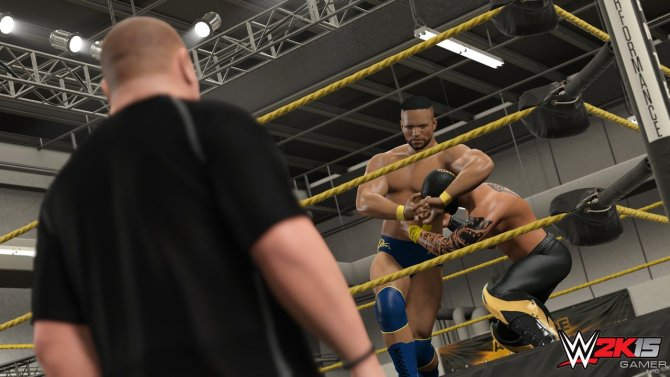 Скриншот игры WWE 2K15