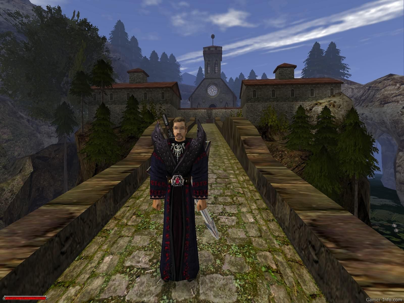 the raven gothic elements